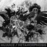 Mujuice Metamorphosis 2014 рецензия