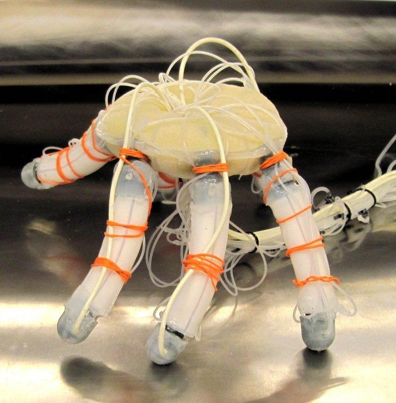 мягкие роботы jambot