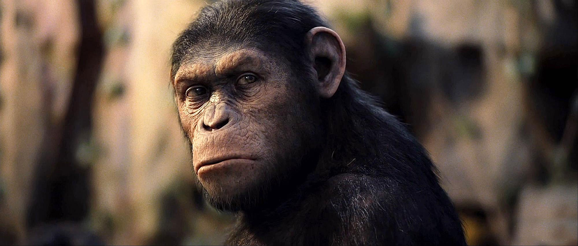 Rise_of_the_Planet_of_the_Apes-18