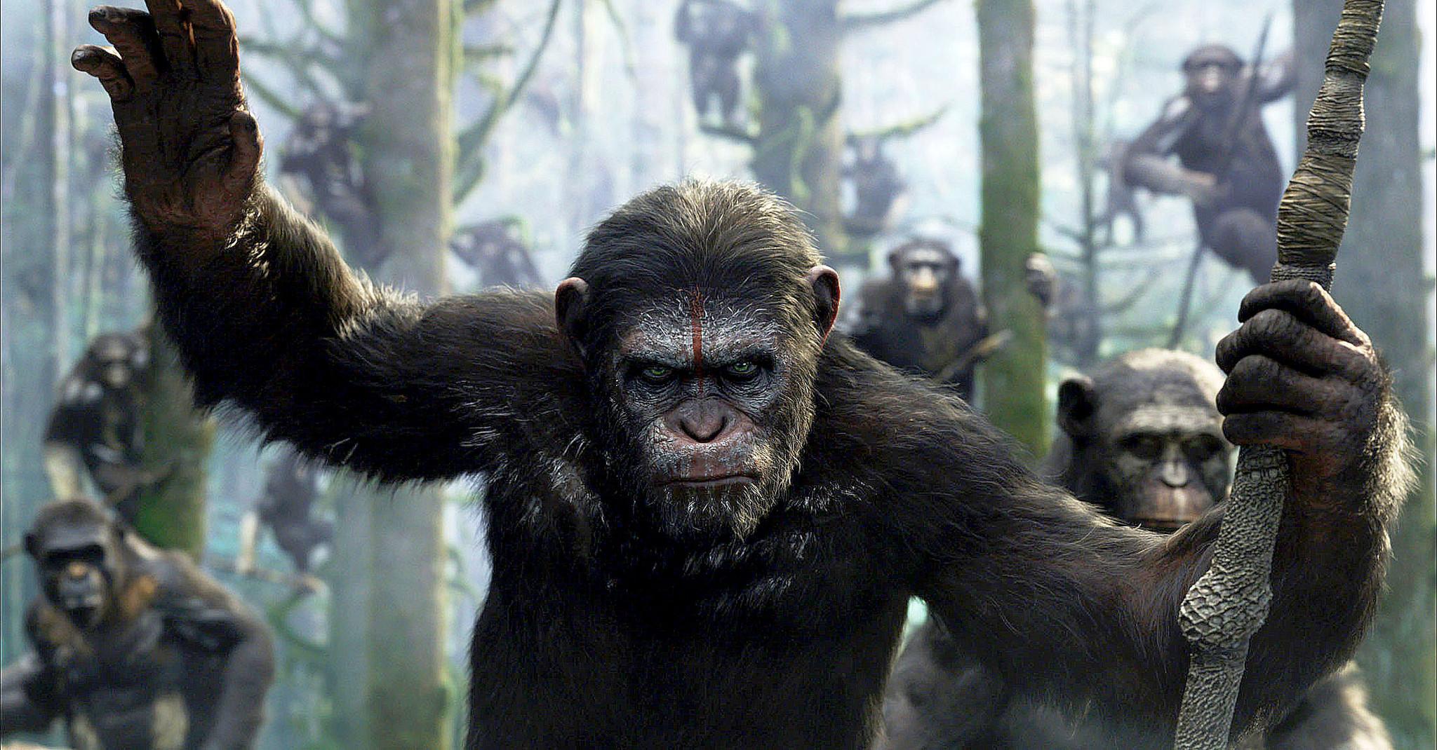 планета обезьян петр сальников виктор зуев отвратительные мужики disgusting men гид по планете обезьян