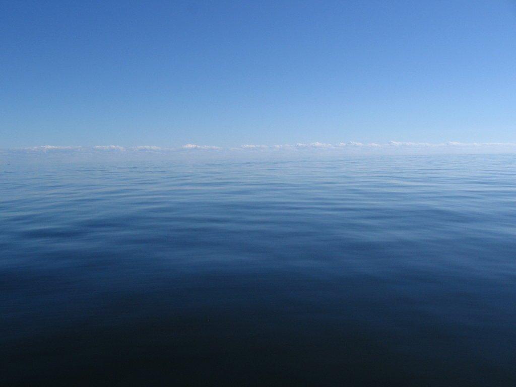 мертвый штиль затерянные в океане капитан мы в полной жопе отвратительные мужики