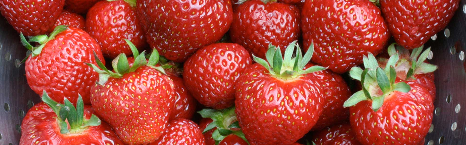 8476-red-strawberries