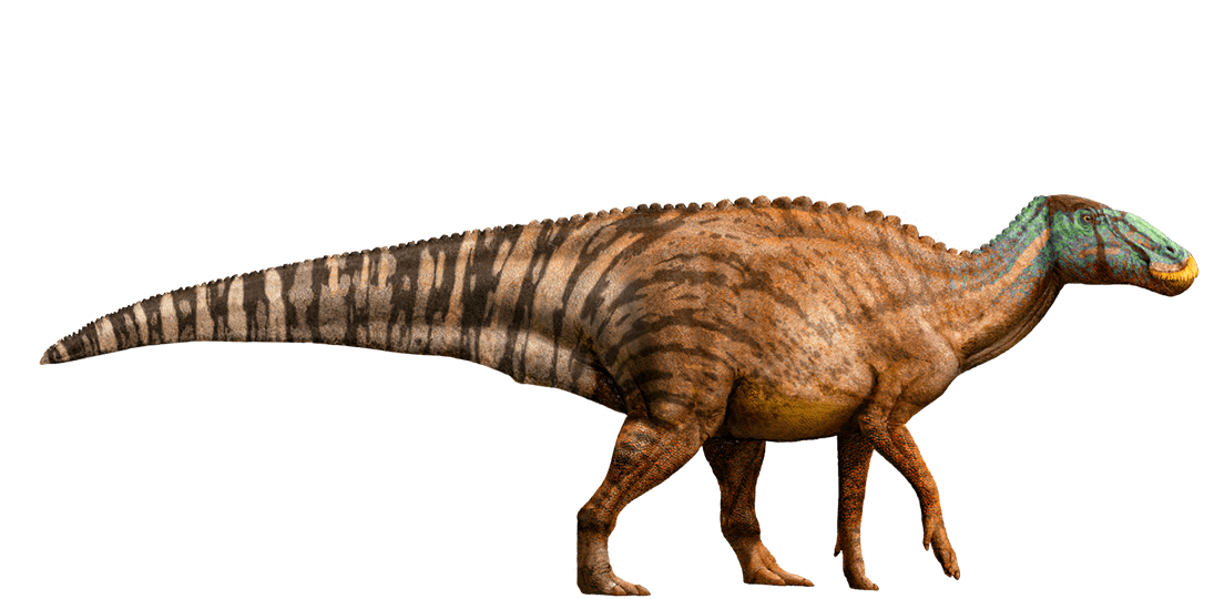 jurassic_world__edmontosaurus_by_sonichedgehog2-d8jnwug