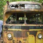 Уолтер рядом с классическим школьным автобусом 50-х