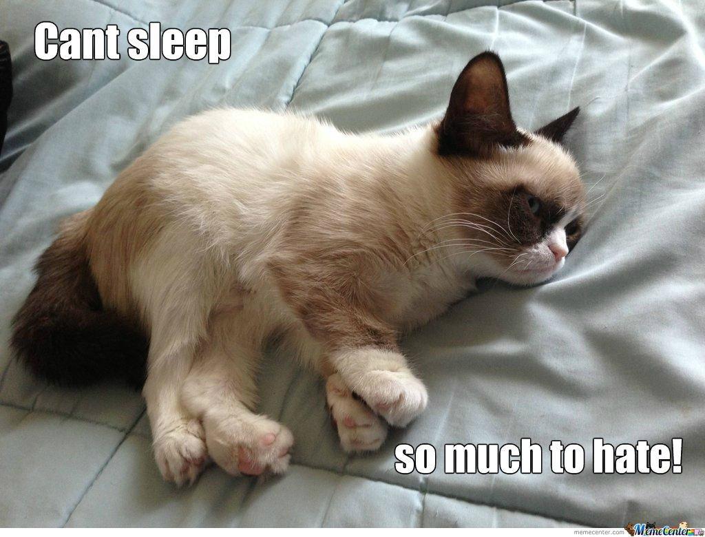 grumpy-sleepy-cat_o_974136