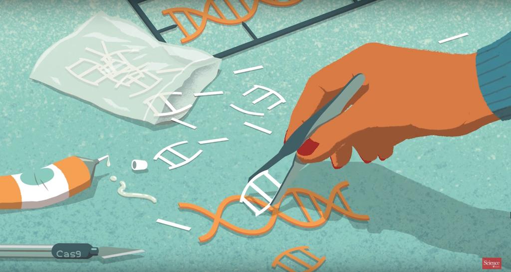 днк редактор итоги 2015 года главные научные открытия отвратительные мужики 2015 in science disgusting men