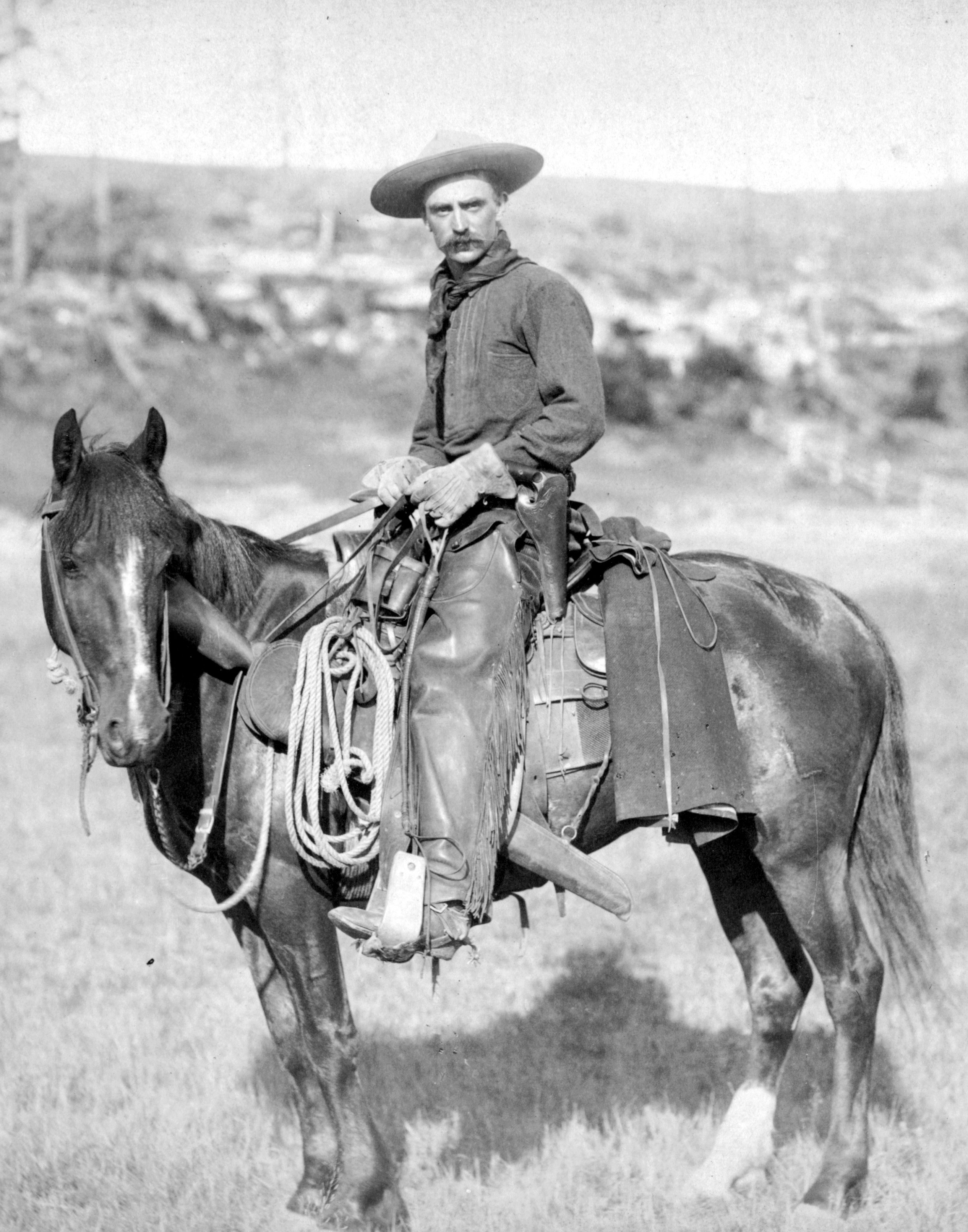 a history of horses in the american wild west Download the wild west facts & worksheets the american old west, also known as the american frontier or the wild west, means the history.