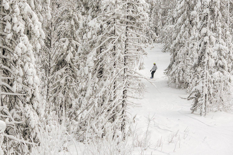 туризм в россии куда поехать отдыхать в россии отпуск в россии нет денег горнолыжные курорты урал алтай ближайшее зарубежье