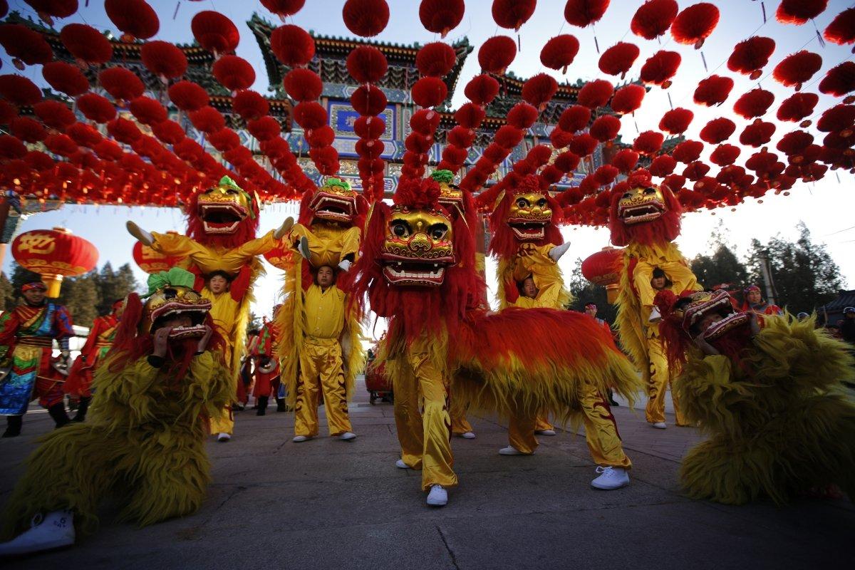 собаки фото нового года в китае значение хранит