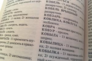 Где словарь фени