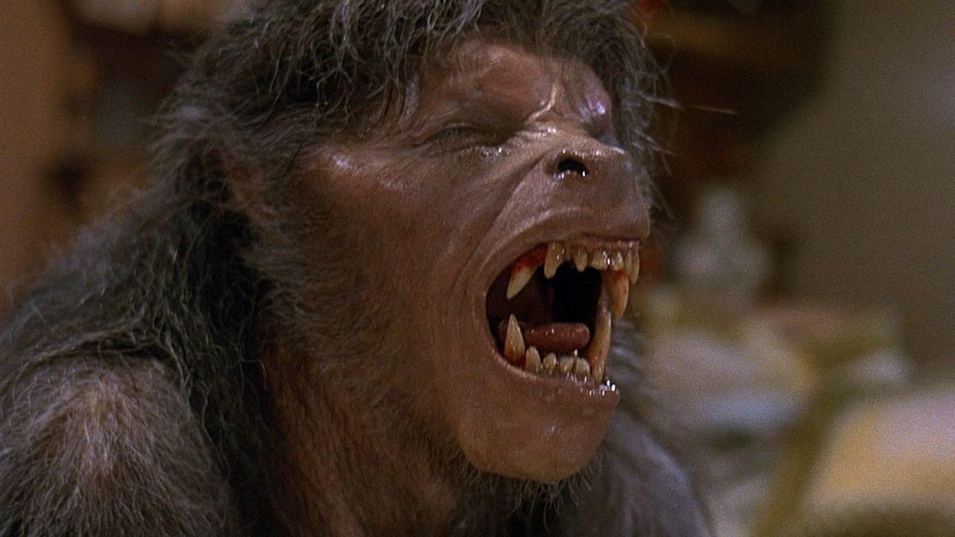 оборотни фильмы отвратительные мужики вервольф disgusting men