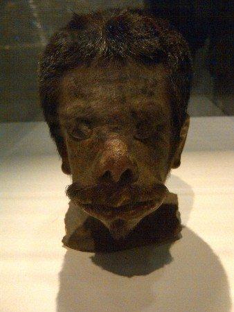 сушеные головы тсантса хиваро индейцы южная америка мумии отвратительные мужики охотники за головами digusting men shrunken heads