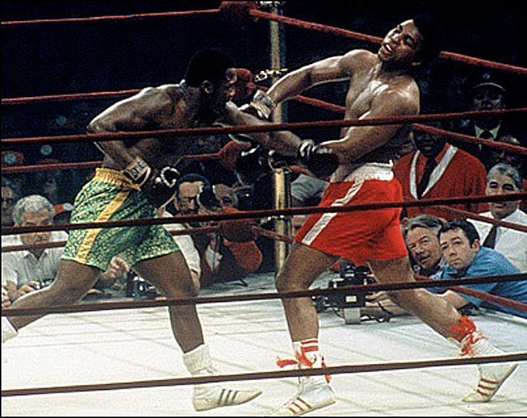 Мохаммед Али бокс спорт умер смерть 75 лет величайший боксер современности спорт статьи отвратительные мужики