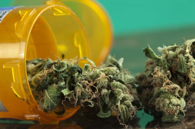 марихуана свойства медицинское использование отвратительные мужики disgusting men польза и вред