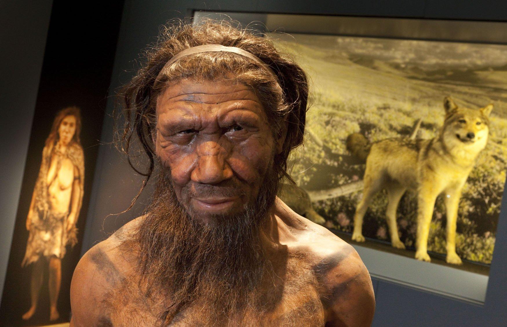 Неандертальцы секс видео