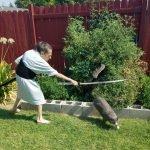old lady photoshop battle фотошоп баттл старая леди прогоняет кота от томатного дерева reddit фото новости отвратительные мужики