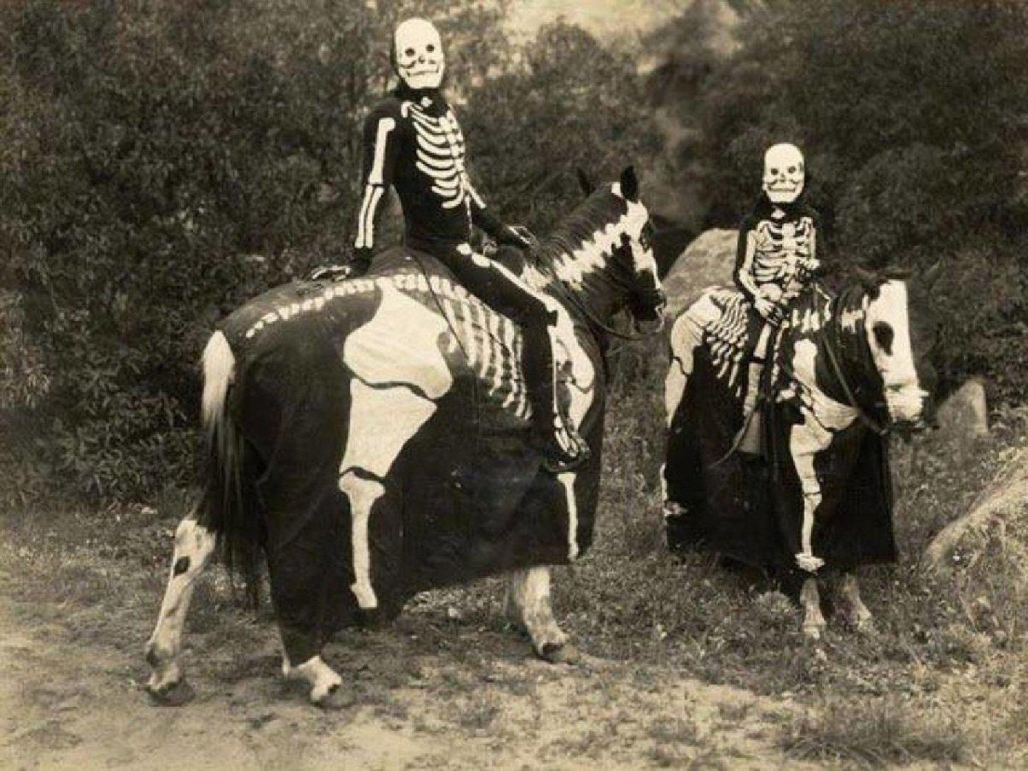 хэллоуин хотят запретить в россии канун дня всех святых понедельник начинается с дичи вий шварценеггер джеки чан отвратительные мужики