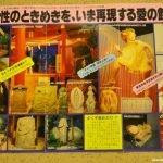 хихокан заброшенный секс-музей японцы дичь фото отвратительные мужики disgusting men