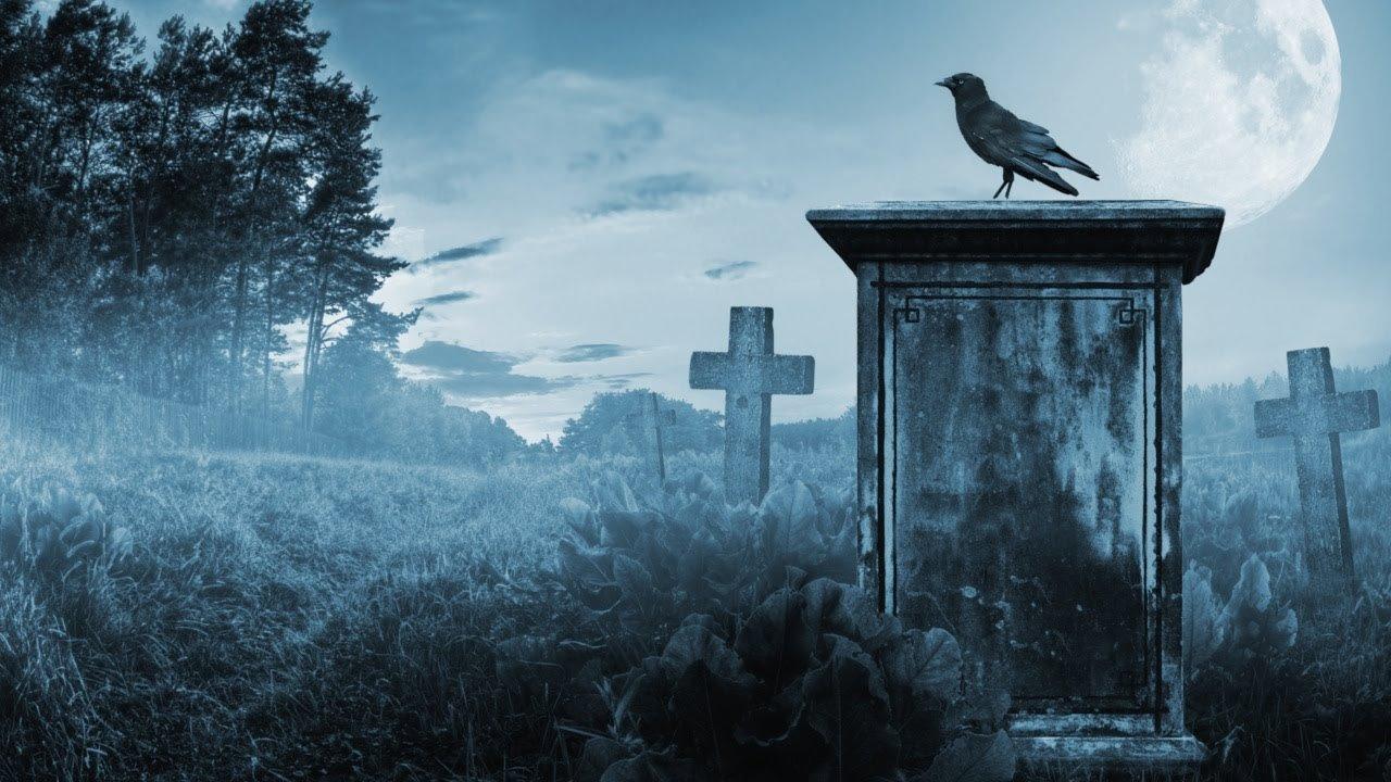 день леди в британии вакханалия скачки в эйнтри бурятский жеребец цифровые надгробия понедельник начинается с дичи отвратительные мужики dsgusting men