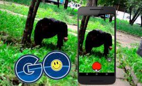 Понедельник начинается с дичи: москвичи забросили Pokemon GO и ринулись искать чужие закладки