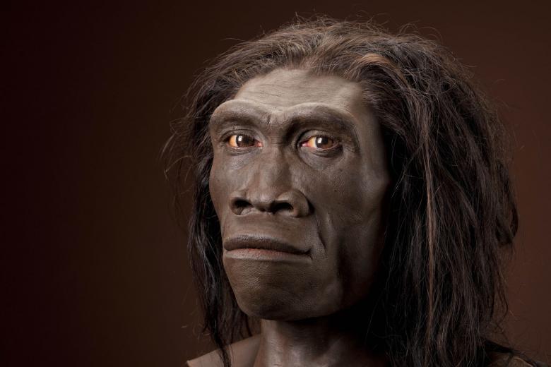 предки человека генитальный герпес происхождение парантропы бойса гоминиды отвратительные мужики disgusting men