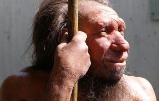 Каннибализм, орлы-людоеды и обжорство: как мог умереть твой доисторический дед