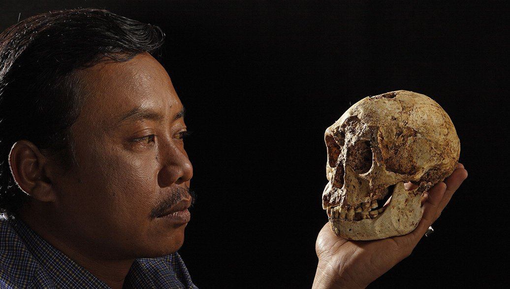 человек флоресский homo floresiensis хоббиты с острова флоренс хоббиты с флоренса отвратительные мужики disgusting men