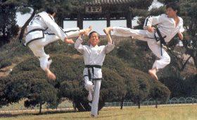 Тхэквондо — как корейцы превратили прыжки из кустов в боевое искусство