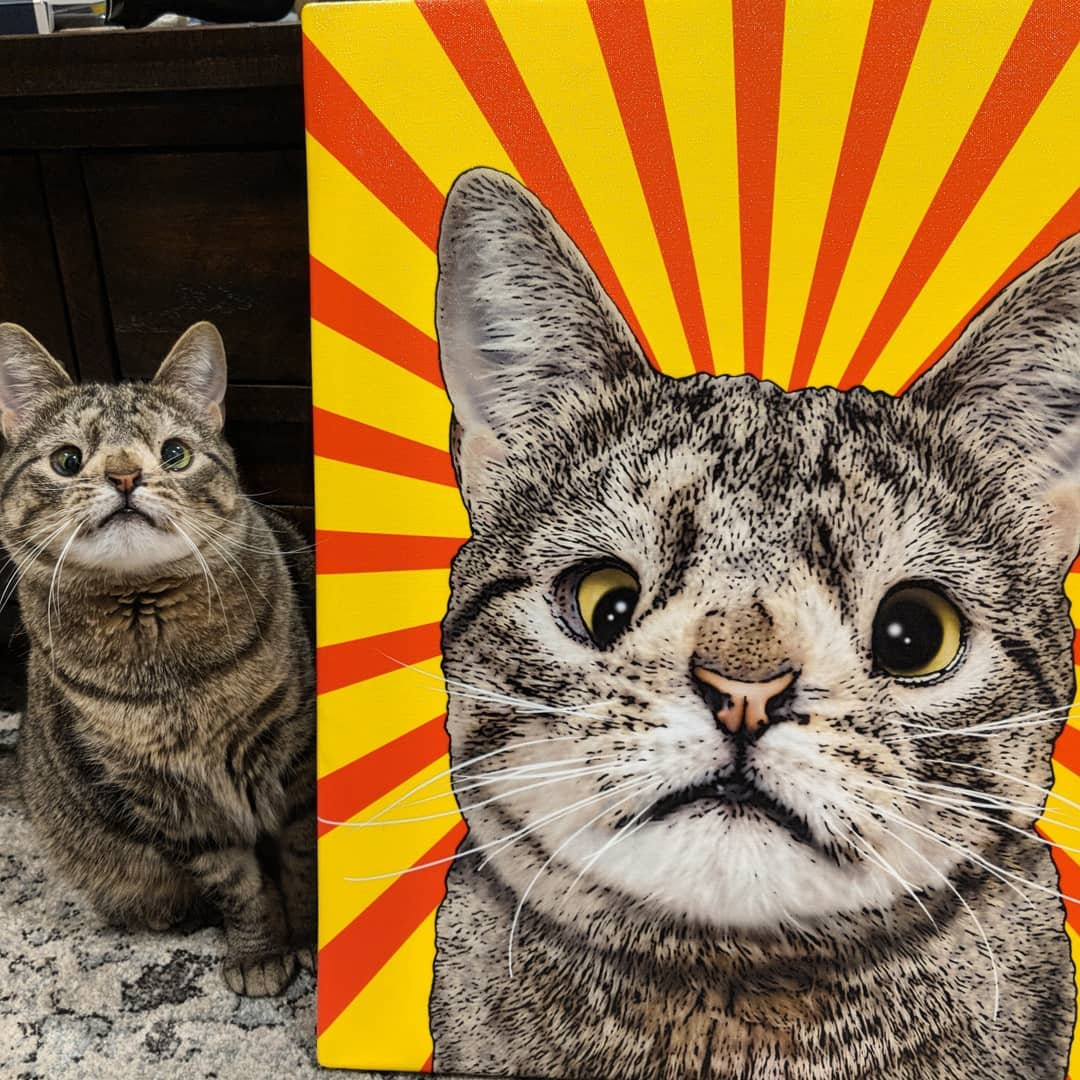 кошка с синдромом дауна жизнь животные отвратительные мужики disgusting men