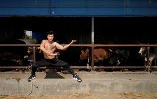 Понедельник начинается с дичи! Кунг-фу мастер дерется с быками, чтобы доказать, что у него стальные яйца