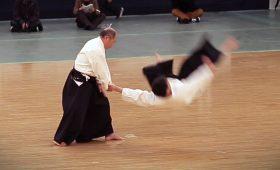 Дайто-рю Айки-дзюдзюцу — боевое искусство, отработанное на трупах павших самураев