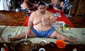8 зубодробительных фактов о сумо