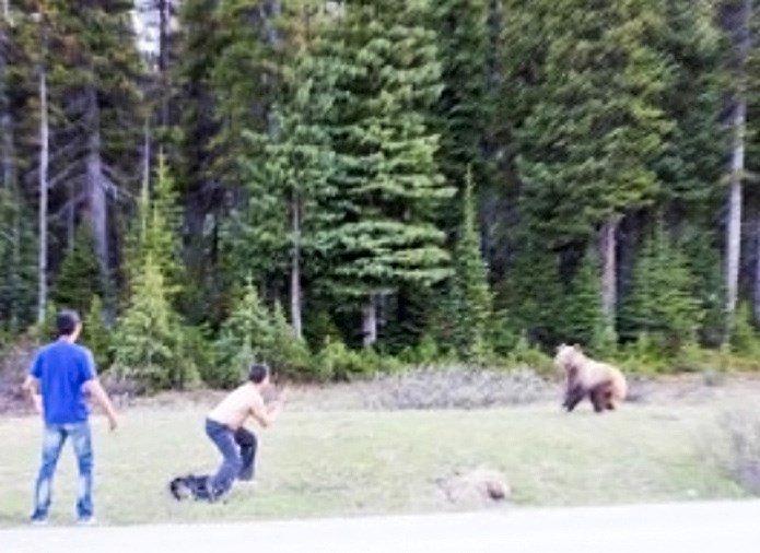 драка с медведем понедельник начинается с дичи отвратительные мужики