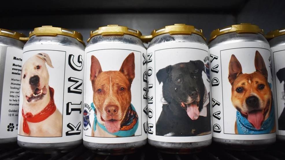 пиво и собака новость отвратительные мужики disgusting men