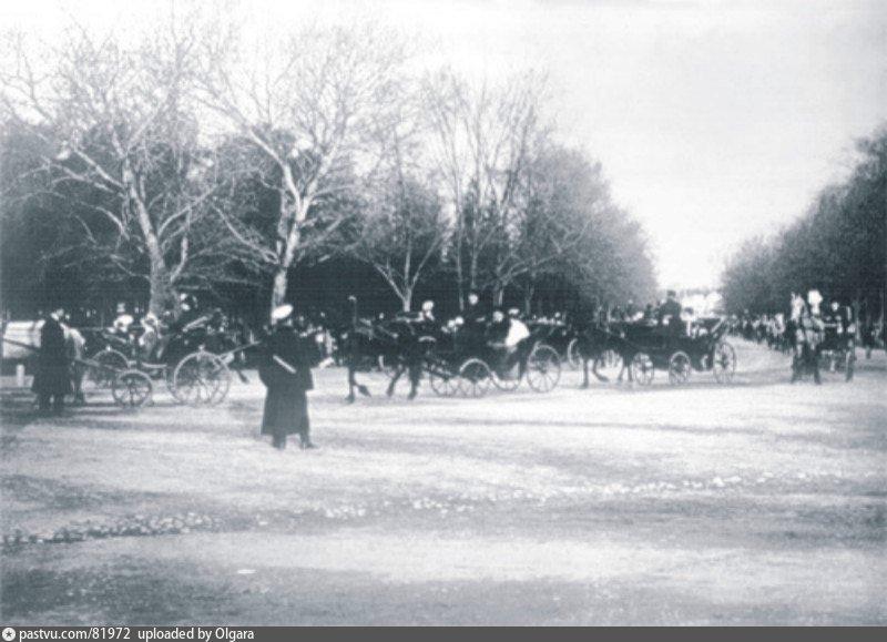 Выезд экипажей в Петровском парке.