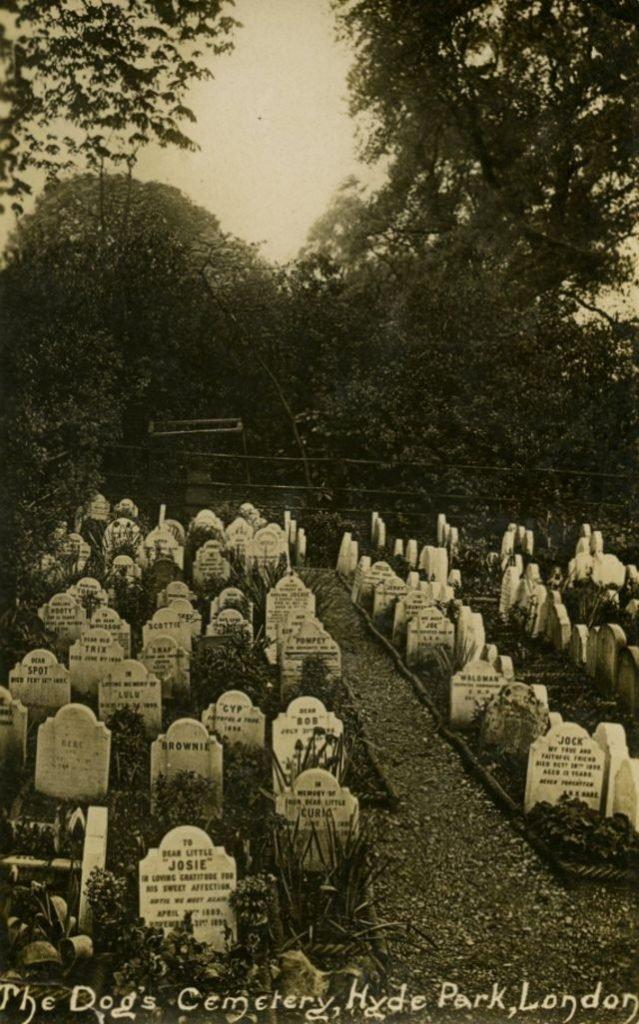 реальное кладбище домашних животных отвратительные мужики