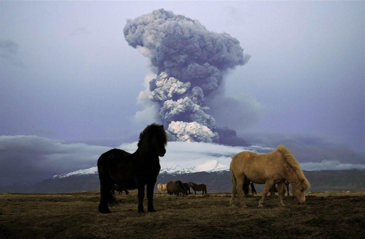 исландия вулкан рагнарек отвратительные мужики disgusting men