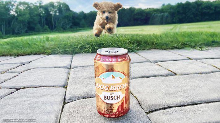 пиво для собак отвратительные мужики