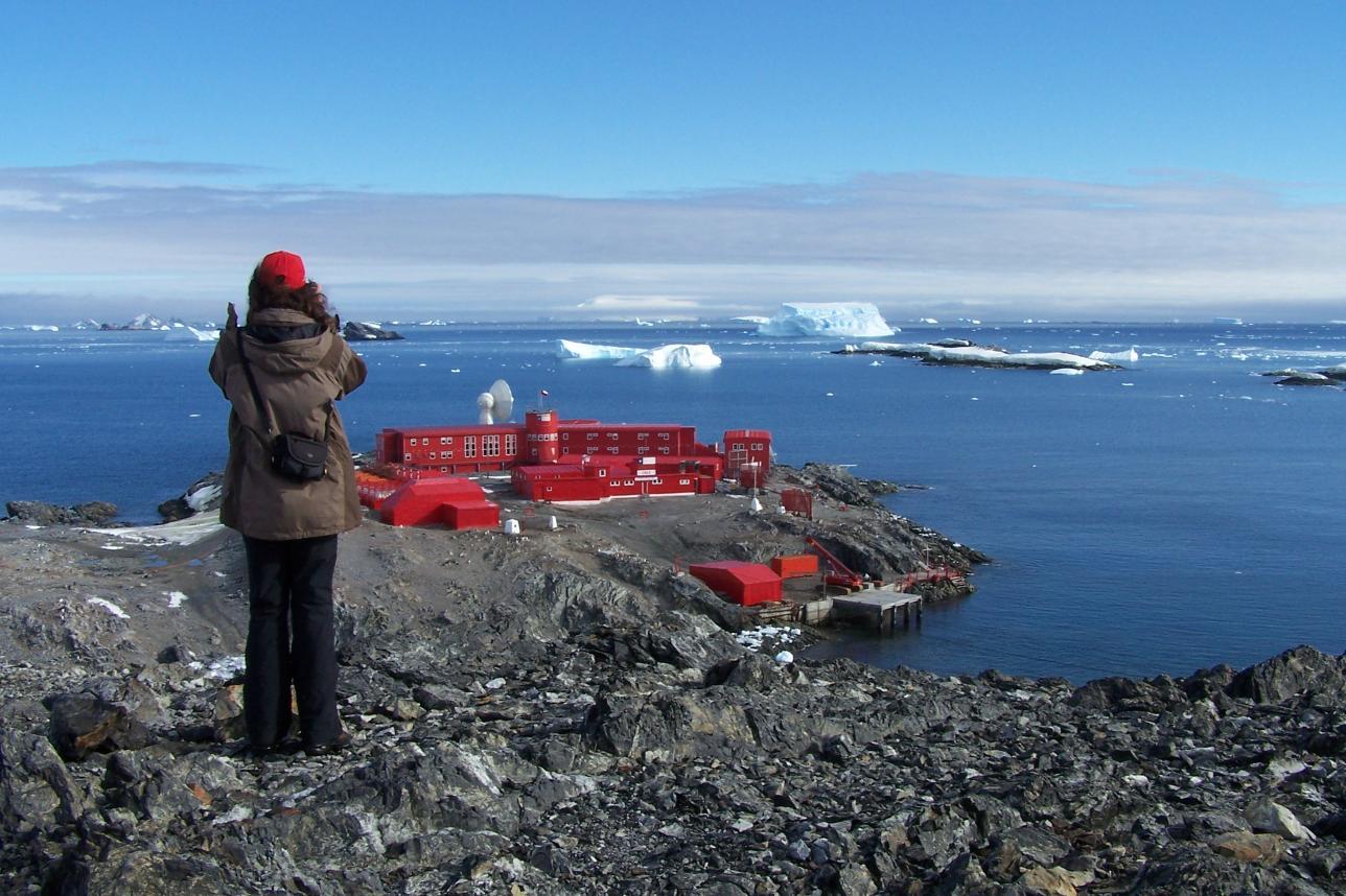 covid антарктика коронавирус в антарктиде