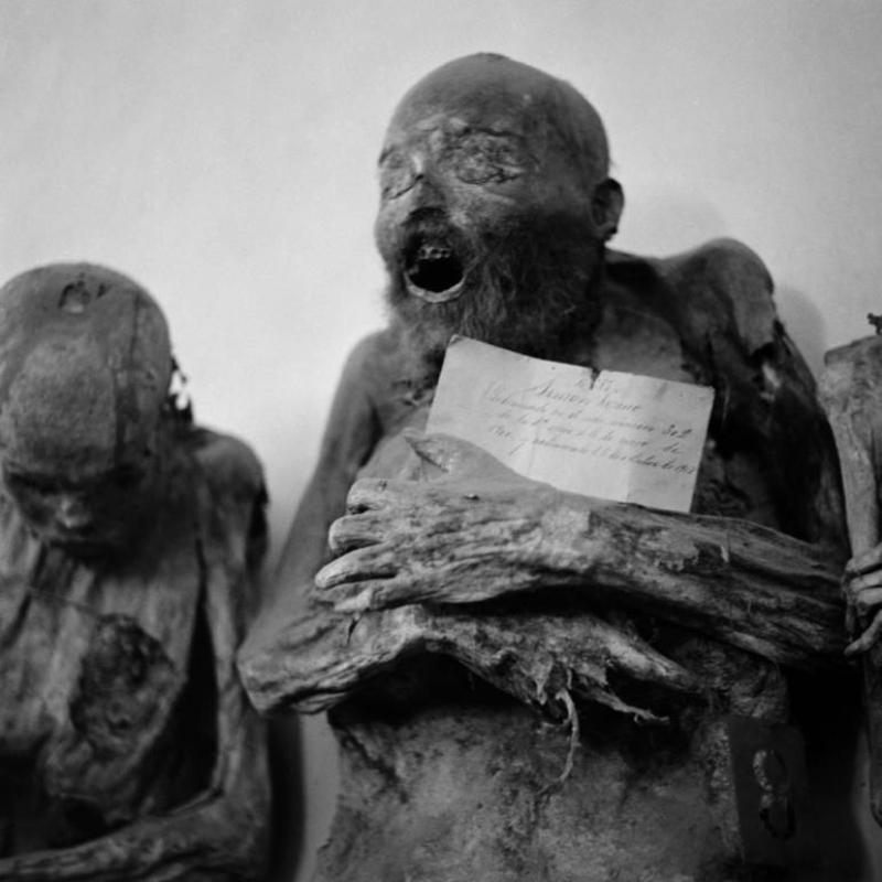Мексиканские мумии из Гуанахуато