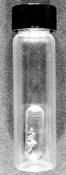 01GARDNERJP3 jumbo - Загадка пропавших шедевров: как фальшивые копы ограбили музей в Бостоне на 500 миллионов и оставили в дураках ФБР