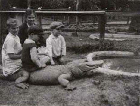 Пугающе очаровательно: фото детей верхом на аллигаторах