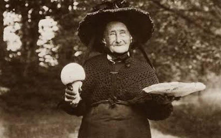 баба ануйка старая ведьма отравительница старуха убийца