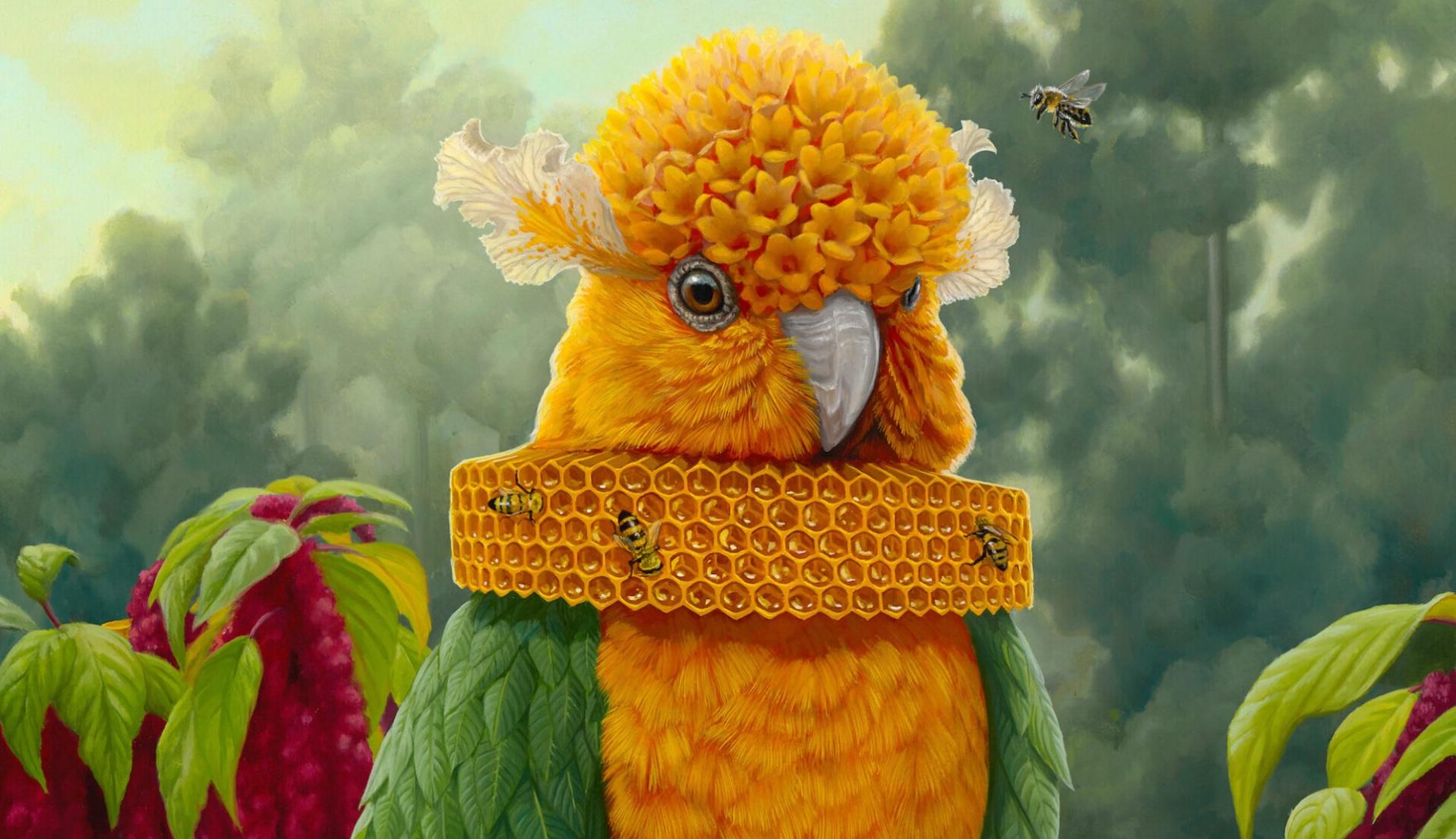 джон чинг тропические картины тропические цвета животные