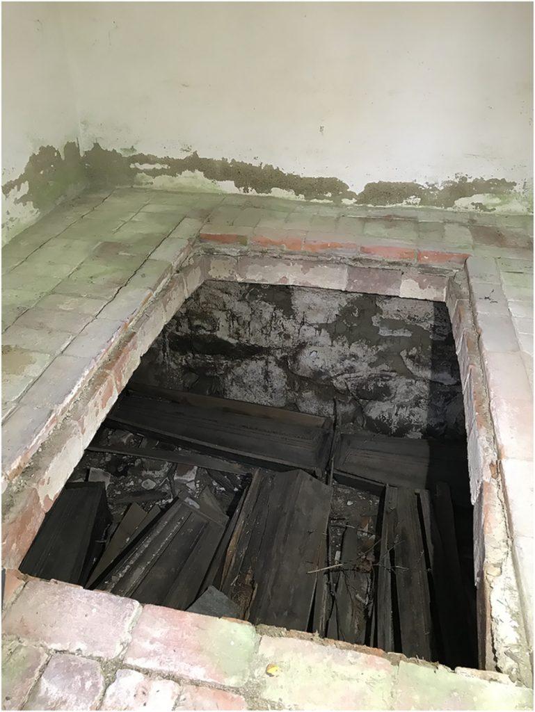 посмертные роды в гробу