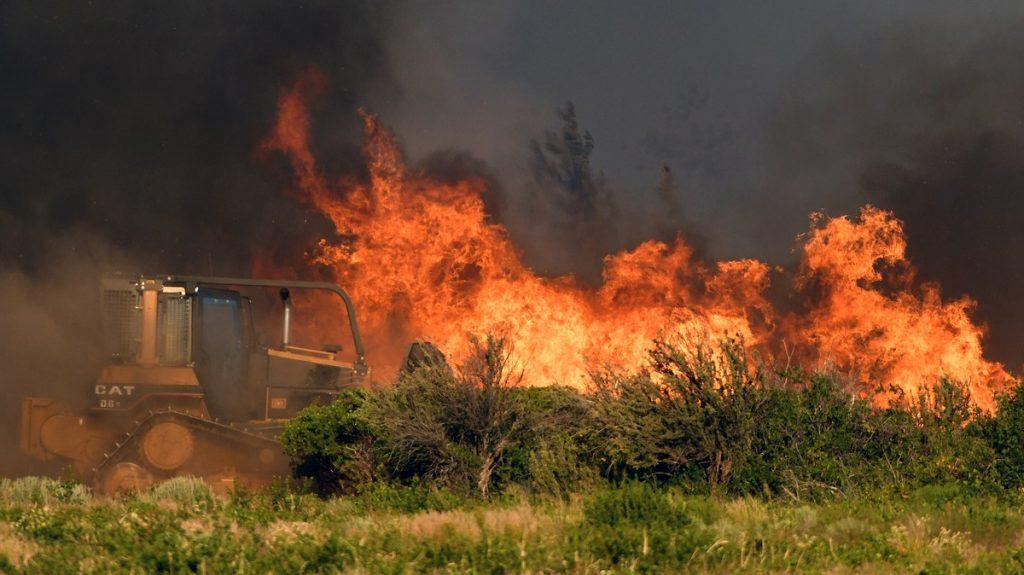 калифорния конопляные фермы горят пожар в калифорнии лесные пожары