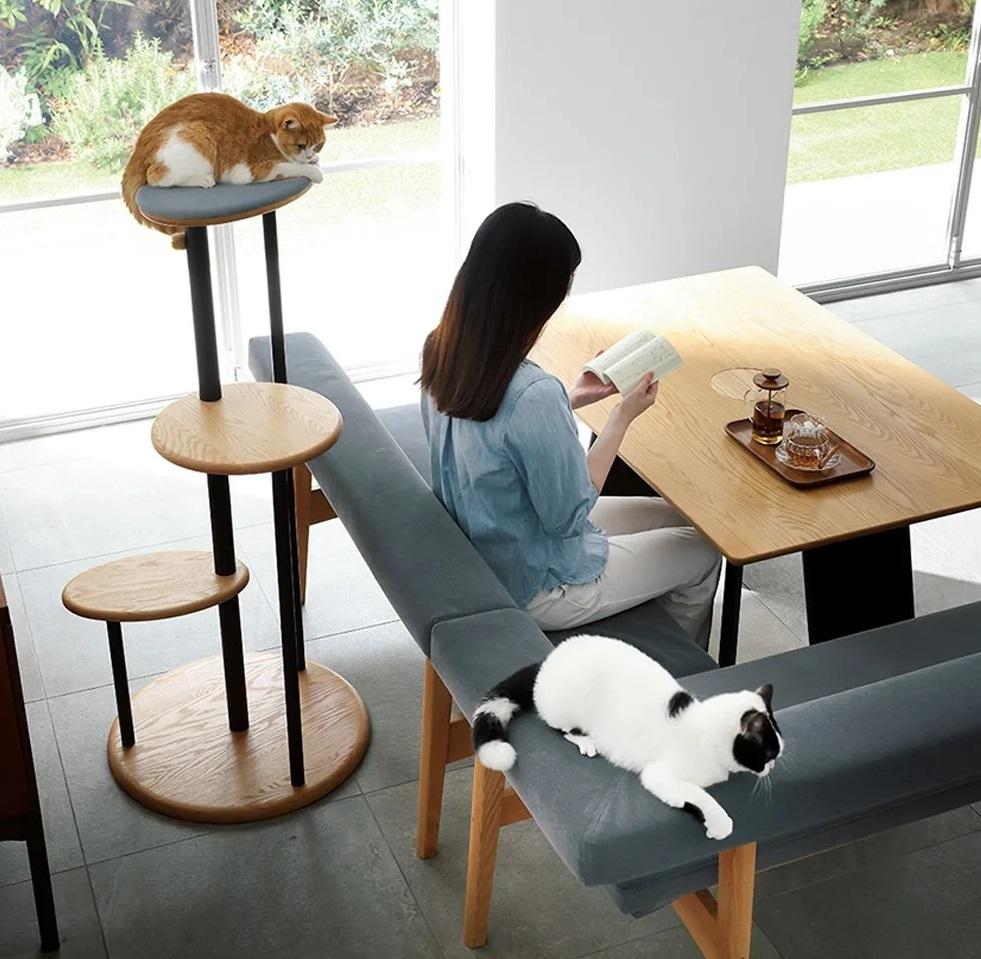 d7eddcf38cdf14769abde968e23b98a7 1 - В Японии выпустили стол с отверстием для кота — чтобы обедать вместе с питомцем