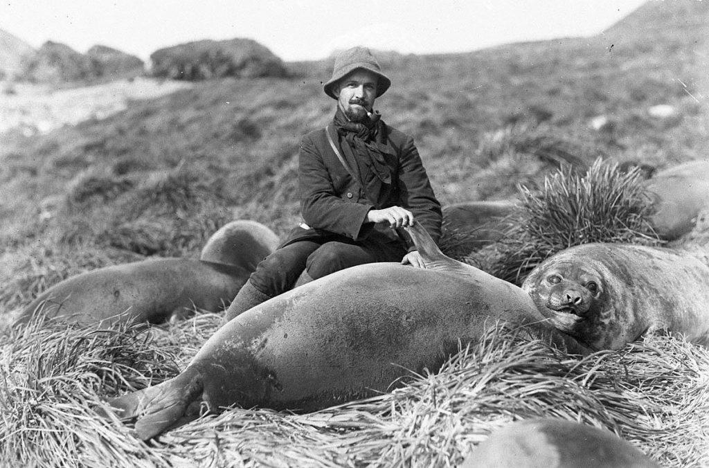 arctic expedition 10 1024x676 - Бравые «осси» во льдах: австралийская экспедиция в Антарктике 1911 года