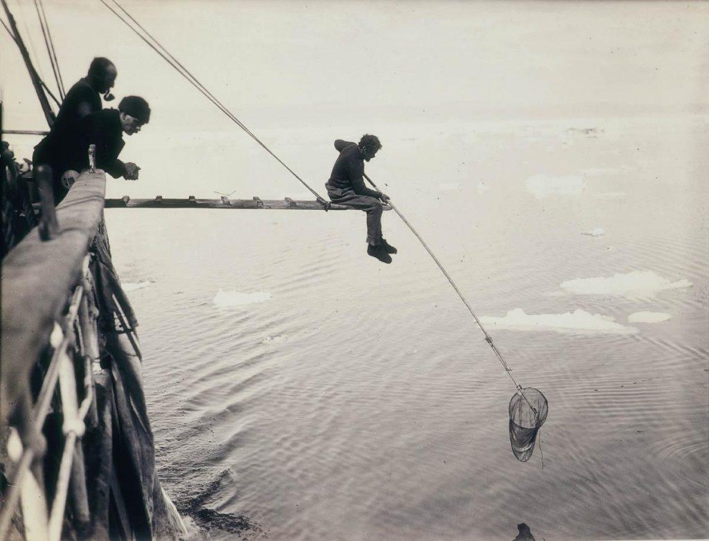 arctic expedition 7 1024x781 - Бравые «осси» во льдах: австралийская экспедиция в Антарктике 1911 года