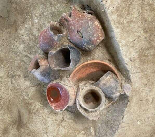 В Китае нашли остатки пива, которому 9000 лет